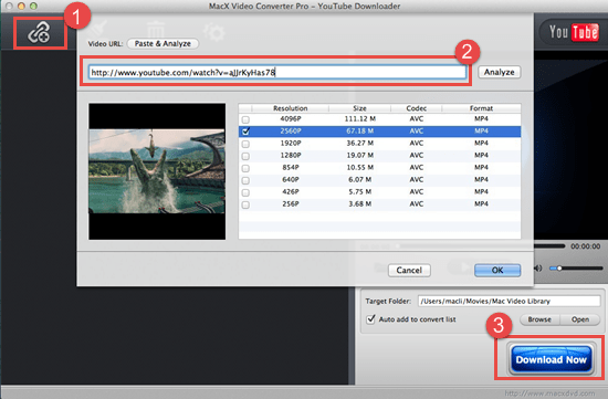 application to download youtube videos for mac