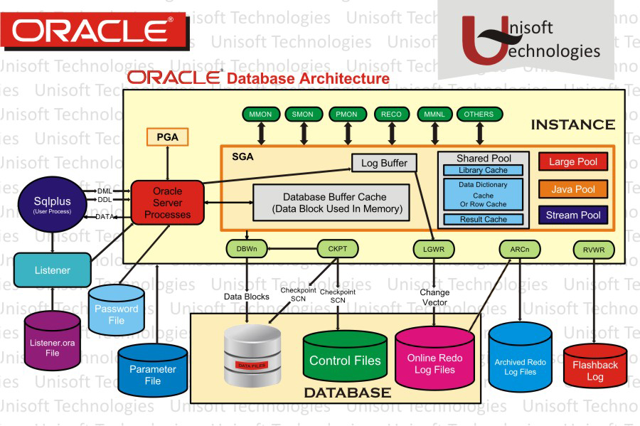 oracle application server 10g forms and reports services download