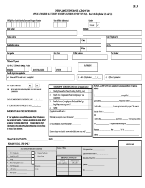 government maternity leave application form