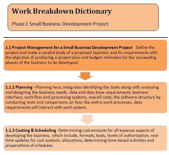 sample project description for pmp application